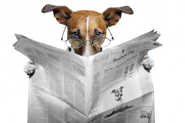 Коляда рассказал, что не доверяет журналистам