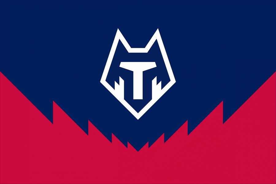 'Тамбов' не получил лицензию для игры в ФНЛ или ПФЛ на следующий сезон