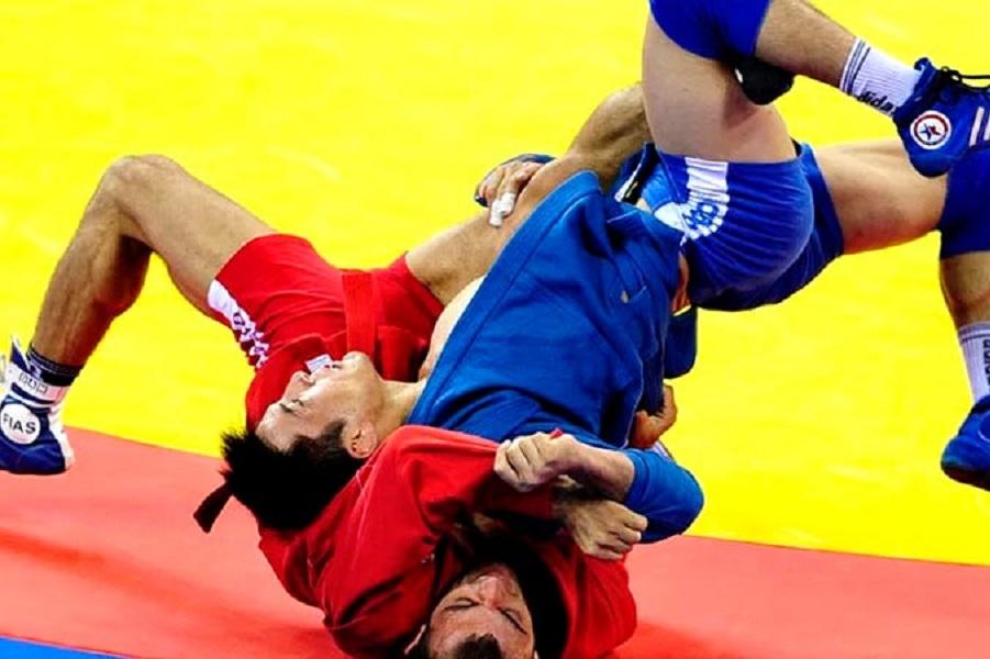 Президент FIAS пообещал бороться за то, что самбо включили в программу летней Олимпиады-2028