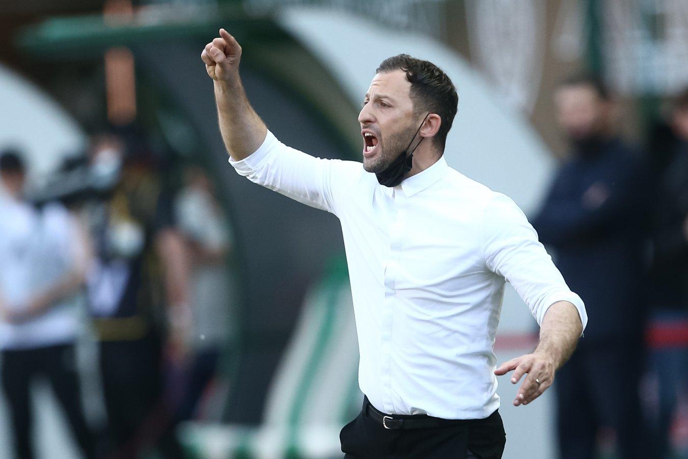 Доменико Тедеско может стать новым главным тренером «Фиорентины»